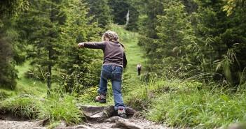 Erlebniswanderweg Holzweg im Zillertal