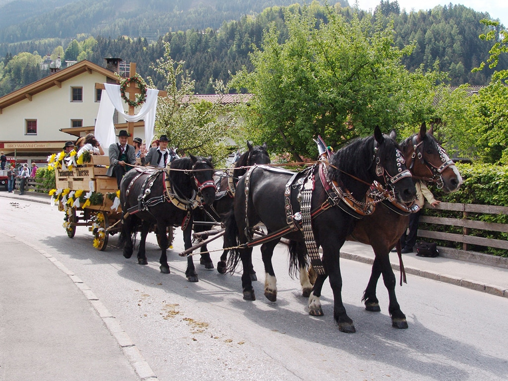 Im September 2015 findet das 3. Zillertaler Pferdefest in Fügen statt