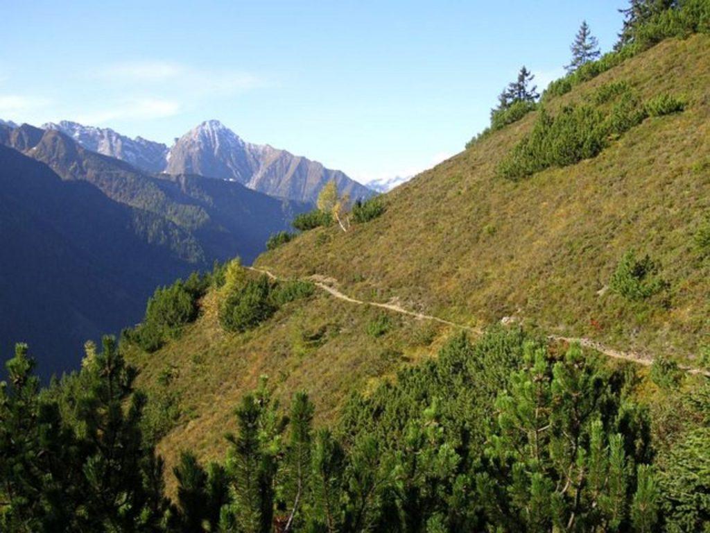 Bergwanderung Brandberg